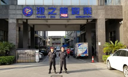 祝贺我司与深圳港之龍实业合作担任保安护卫
